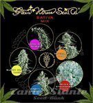 GREEN HOUSE SEEDS - Sativa Mix