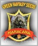 GREEN FANTASY SEEDS - Maracana
