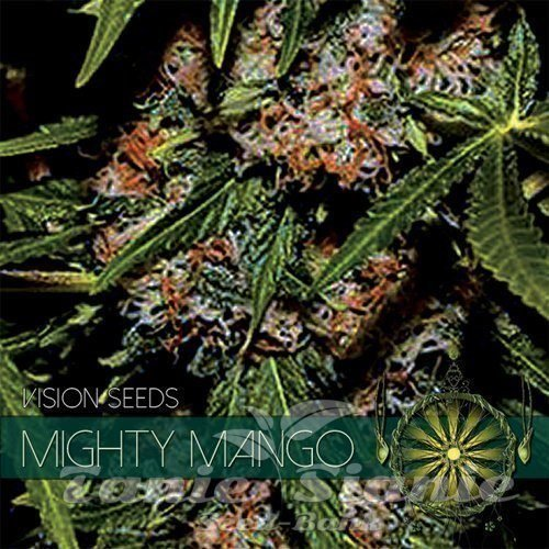 vision-seeds-mighty-mango500x500.jpg